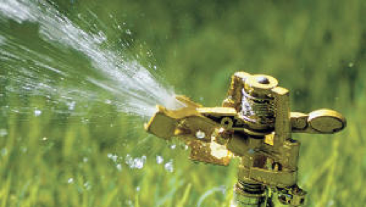 See? This is the kind of sprinkler I was talking about!
