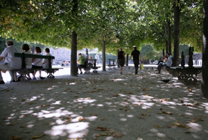 Why are the streets in France lined with trees? So the Germans can march in the shade! Hahaha, World War II humor - It never gets old!