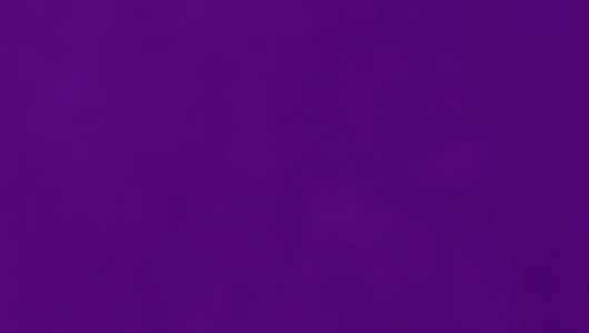 It was, somehow, even more purple than this.