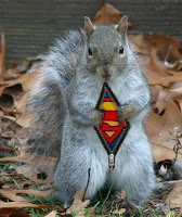 That cost might come down assuming we find the right squirrels for the job.